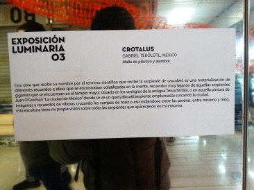 crotalusdesc1
